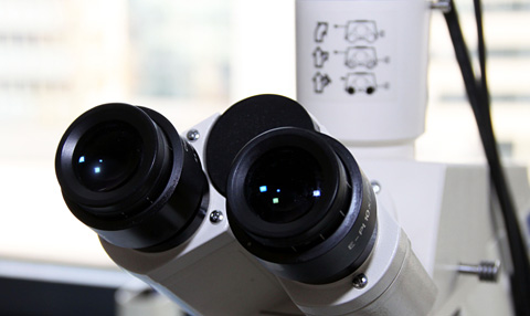 __content_urologie_mikroskop